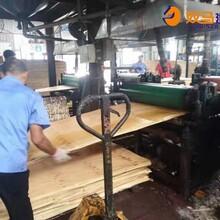 临沭县棕色建筑模板供货价格图片