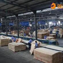 丹凤县镜面建筑模板厂家图片