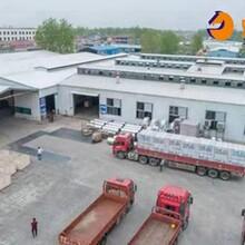 西青区三胺胶建筑模板工厂订购安全可靠图片