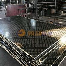 铜川酚醛胶镜面建筑模板厂商出售图片
