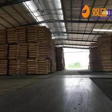 喜德县桉木建筑模板哪里生产图片