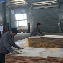 市南区棕色建筑模板供货价格图片