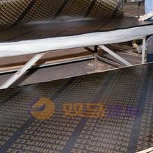 九龙县酚醛胶镜面建筑模板指导报价图片