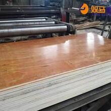 定州市杨木建筑模板生产商图片