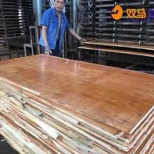 西沙群岛桉木建筑模板生产商家报价图片