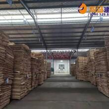 如东县三胺胶建筑模板市场行情图片