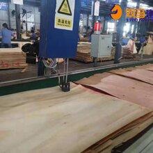 玛纳斯县高层专用建模模板生产流程