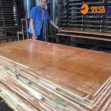 西林县36尺建筑模板厂家价格