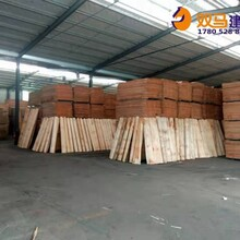 陇川县木胶板模板生产价格图片