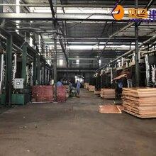 新丰县48尺建筑模板找哪家