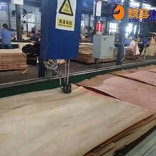 靖江市桥梁覆膜板价格图片