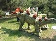 进入远古侏罗纪恐龙艺术展出租恐龙模型租赁图片