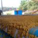 供應保定蓉城環保洗沙淤泥壓濾機帶式泥漿壓泥機廠家現貨