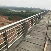秀山桥梁防撞护栏直销图片