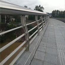 东莞桥梁防撞护栏价格