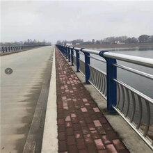 郴州桥梁防撞栏杆价格