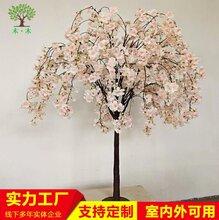 仿真小型桌面樱花树图片