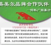 添加剂预混合饲料¥¥¥肉牛育肥肉牛西门塔尔