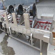 凍肉刨肉機刨肉機廠家刨肉機實時報價圖片