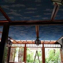 阳光房自动遮阳帘长沙天棚帘长沙电动窗帘图片