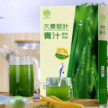 大麥若葉清汁粉固體飲料湖北廠家OEM貼牌代加工圖片