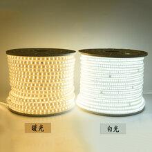 湖北LED灯带暖光白光、220V高压灯带、家装户外工程款灯带图片
