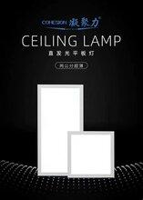 凝聚力平板灯批发零售中山平板灯面板灯生产厂家图片