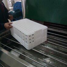 水果蔬菜配送周转筐清洗机食品周转箱自动高压喷淋清洗消毒烘干线图片