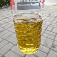 洪澤區承接廢油回收處置,廢機油回收圖片