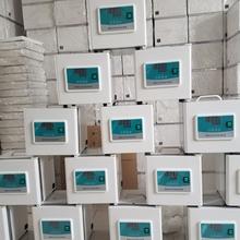 便攜式培養箱BXG-8(8L)恒溫培養箱圖片