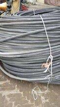 阿拉善盟电线电缆回收今日快报图片
