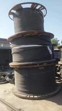 今日求購榆林電纜線回收免費估價圖片