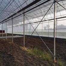 德宏温室大棚工程q235b蔬菜大棚管可折弯镀锌椭圆大棚管图片