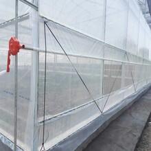 孝感简易温室大棚钢架大棚骨架单跨连体钢管大棚来图定做图片