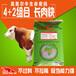 大小牛吃什么飼料長得快怎么去喂養