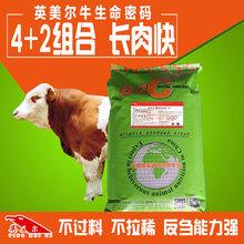 大小牛吃什么饲料长得快怎么去喂养图片