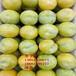 蜂糖李樹苗、蜂糖李李子樹苗新品種、蜂糖李李子樹樹苗價格多少