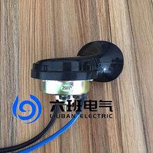 矿用电子喇叭DLEC2-24浇封兼本安型图片