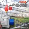 大功率工业厂房取暖器大棚提温暖风机鸡鸭育雏保温热风炉