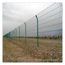 道路护栏网/道路护栏网围栏/河北围栏网批发