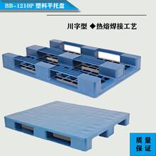 廠家供貨全新料BB-1210PC塑料平托盤棧板批發1200×1000×150新蘭全新蘭圖片
