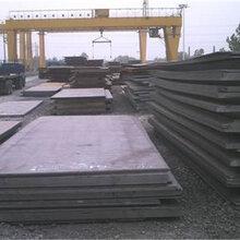 朝陽Q550D鋼板廠家