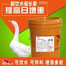 鵝催肥配方這里有,喝水也能長肉你信嗎圖片