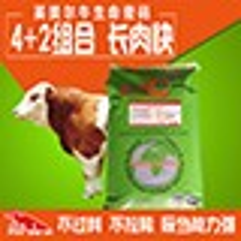 牛怎么喂長的快,養牛飼料必知必看圖片