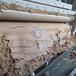 山東濟寧帶寬3米帶式壓濾機報價洗沙污泥脫水機廠家報價
