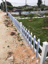 山东小区围墙护栏户外花园栏杆安全可靠图片