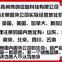 青州博创注册国内外公司快速图片