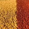 苏州姑苏区彩色陶瓷颗粒防滑路面胶粘石透水混凝土压花地坪施工队