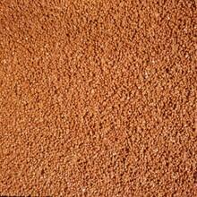 武漢武昌彩色陶瓷顆粒防滑路面膠粘石透水混凝土壓花地坪施工隊圖片