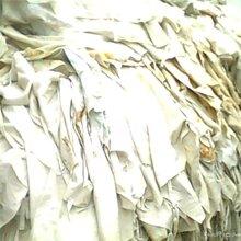 山東省濟南市出售庫存織帶圖片